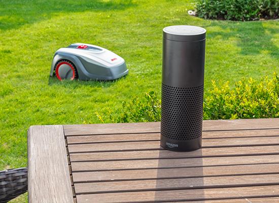 AL-KO-Robolinho-1150-W-600m2-bis-max-1-000-m2-mit-APP-Steuerung-oder-SmartHome-Funktion-Amazon-Alexa-IFTT-Funktion_Maehroboter_Alexa