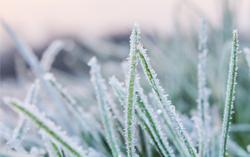 AL-KO Tipps - Schnee am Rasen - was ist zu tun?